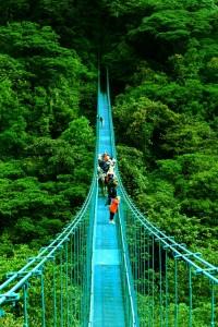 Hanging Bridges walk