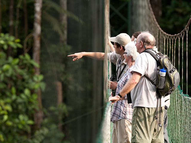 Guided tours in the rainforest by naturalists