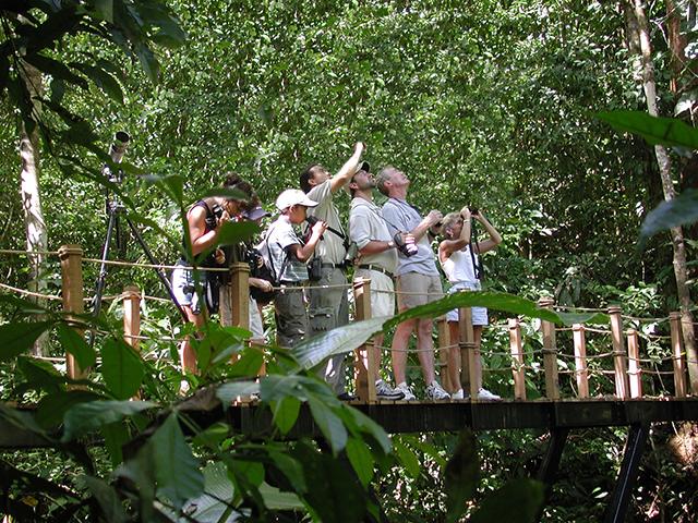 Si Como No Resort and Spa Rainforest
