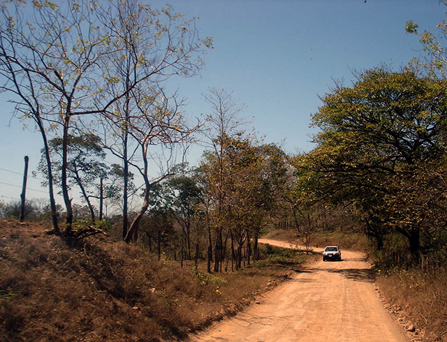 DAY-8-Guanacaste-roads-(2)