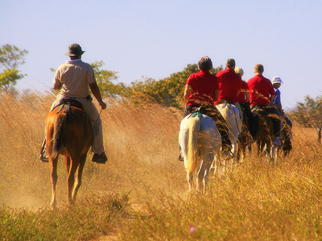 Horseback-riding-in-Guanacaste