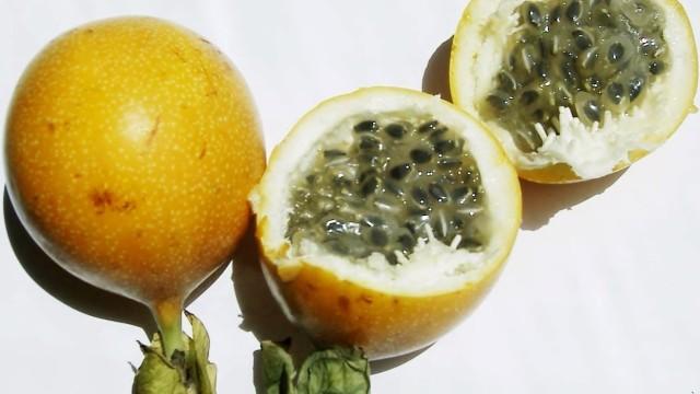 8-Weird-Feria-Fruits6