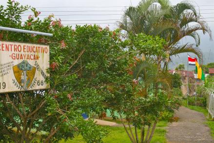 Guayacan, Costa Rica