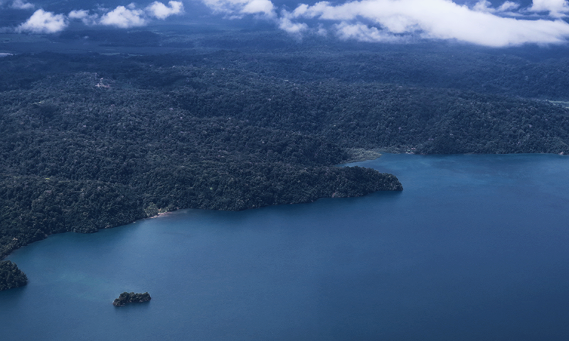 From the air Golfo Dulce