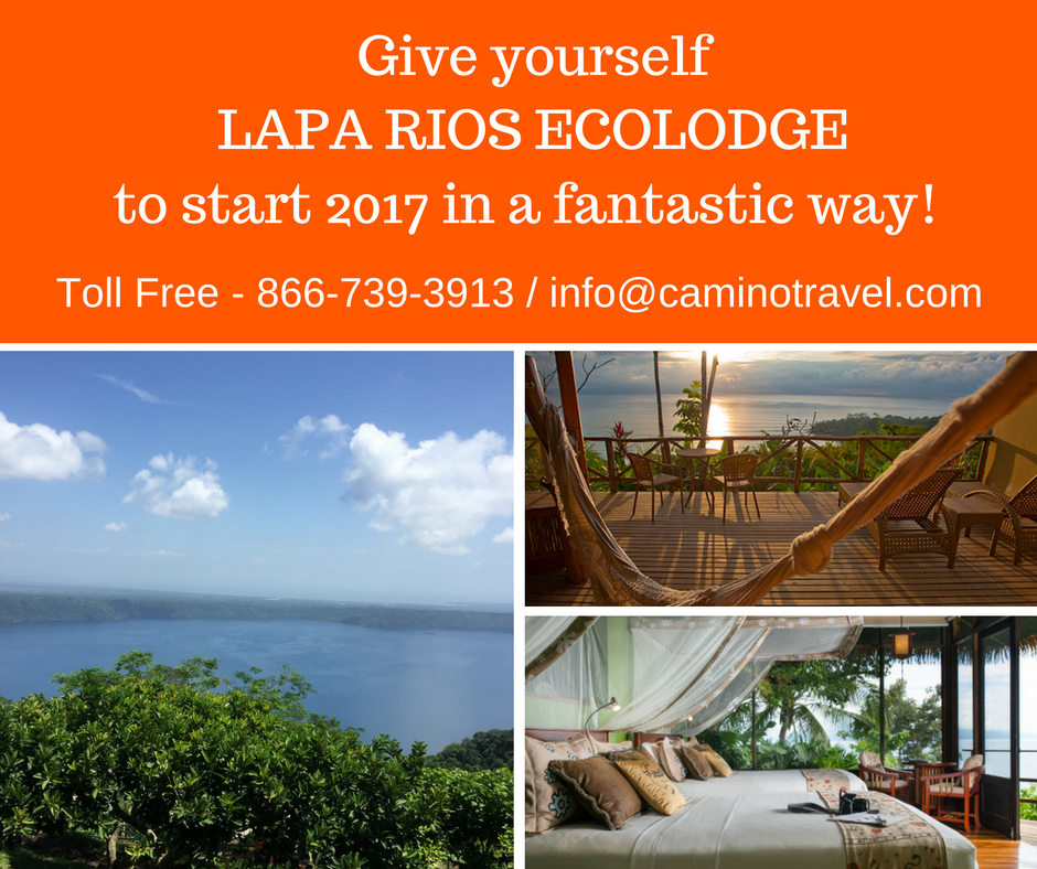 Give yourselfLAPA RIOS ECOLODGEto start 2017 in a fantastic way! (1)