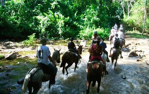 Horseback ride to the waterfall