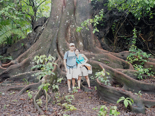 Corcovado National Park Hiking Tour