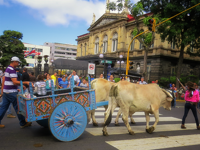 Oxcarts and National Theater