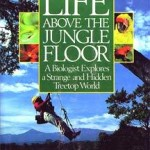 Life above the jungle floor