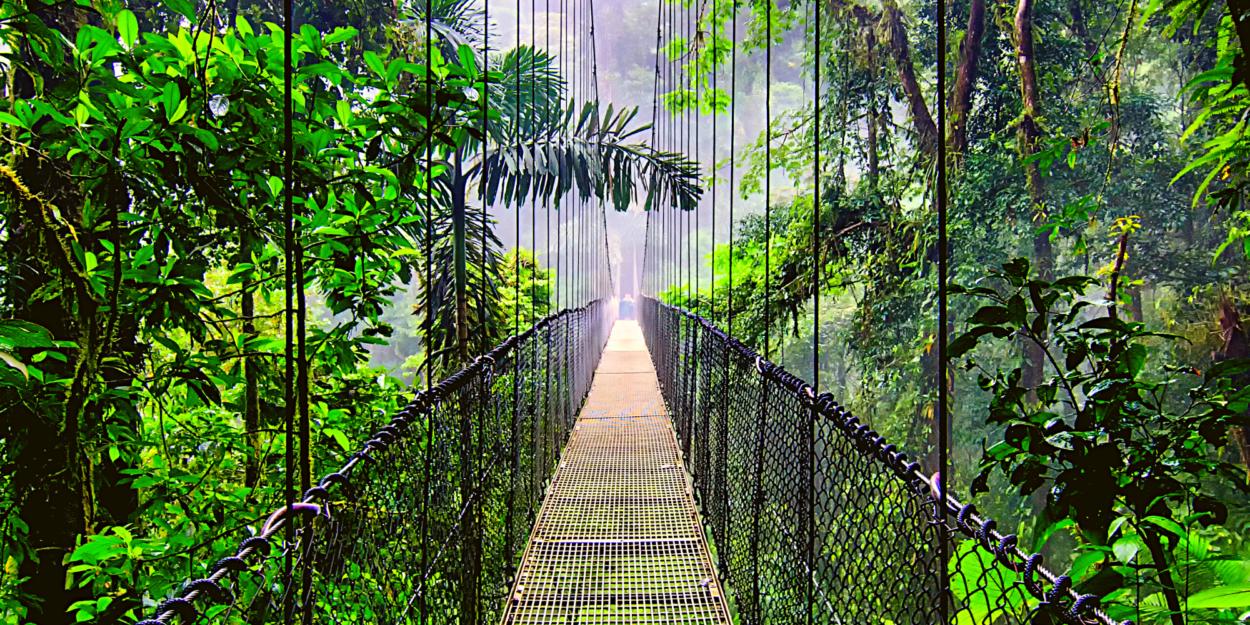 A hanging bridge in Monteverde, Costa Rica