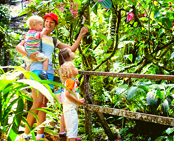 A family with small kids looks at the Costa Rican rainforest from a trail