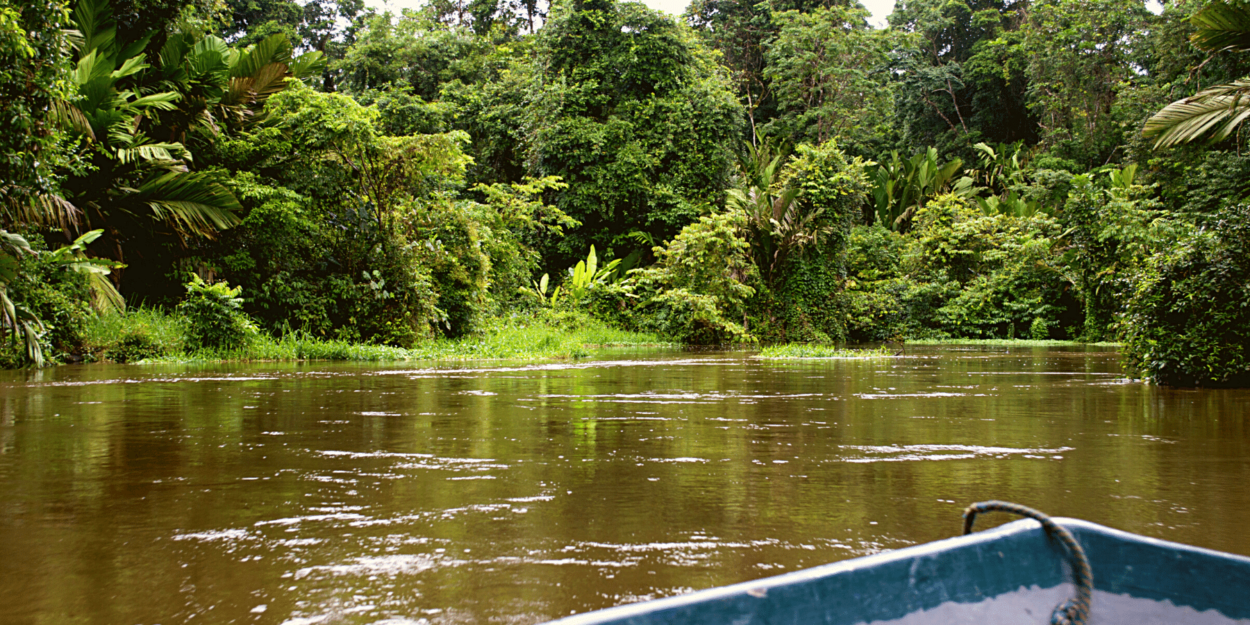 A view of one of the canals that run through Tortuguero in the Northern Caribbean ofCosta Rica