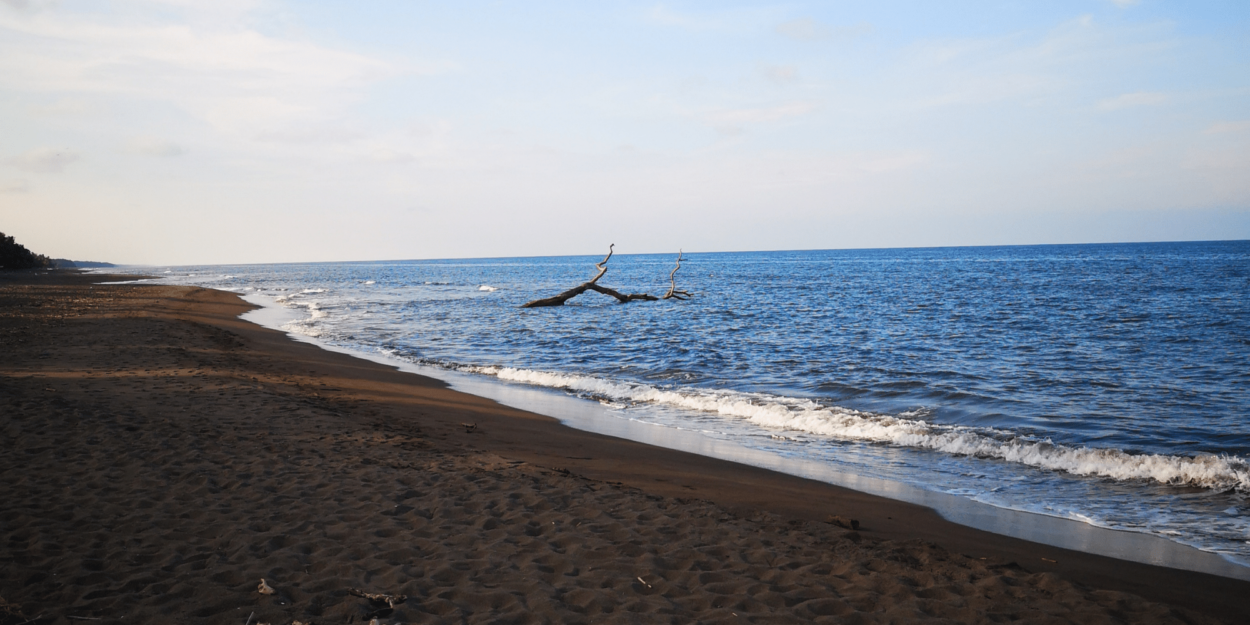 A view of the ocean from Tortuguero