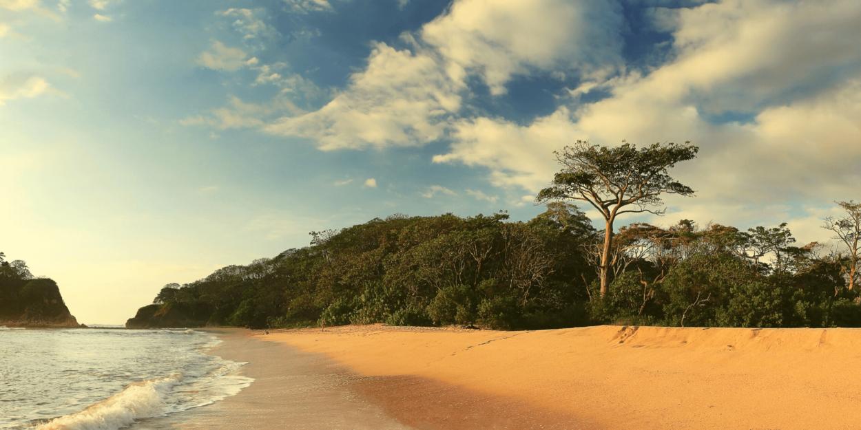 Small sand dunes at Nosara Beach in Costa Rica